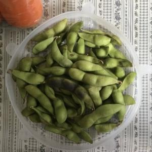 茶豆・黒豆の枝豆が美味しい季節