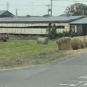 人気度・ビリ県 栃木の素晴らしい秋