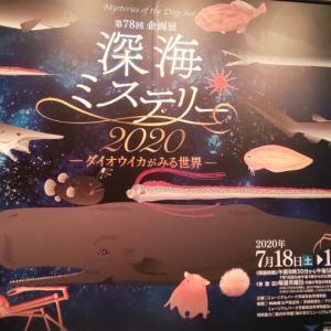 深海ミステリー@茨城県自然博物館
