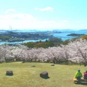 倉敷の桜2020 その2