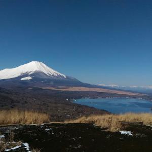 富士を見に