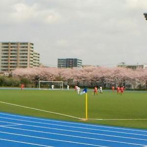 お花見サッカー