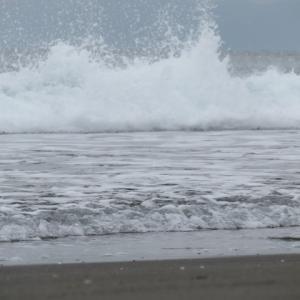 ウルトラシリーズ『大自然・海』 第1098話