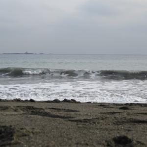 ウルトラシリーズ『大自然・海』 第1099話