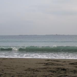 ウルトラシリーズ『大自然・海』 第1100話