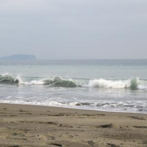 ウルトラシリーズ『大自然・海』 第1154話