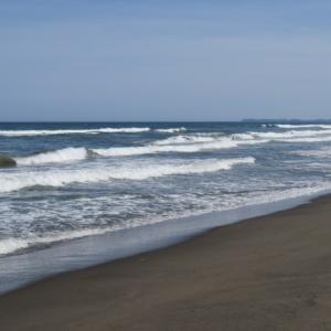 ウルトラシリーズ『大自然・海』 第1174話