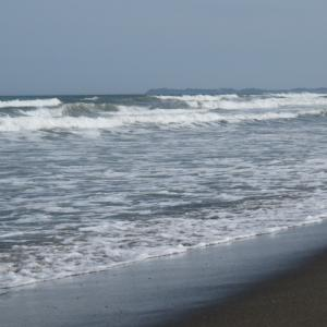 ウルトラシリーズ『大自然・海』 第1185話