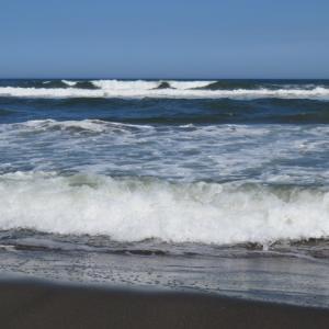 ウルトラシリーズ『大自然・海』 第1200話