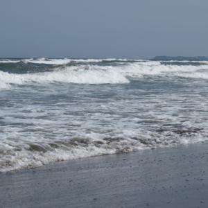 ウルトラシリーズ『大自然・海』 第1202話