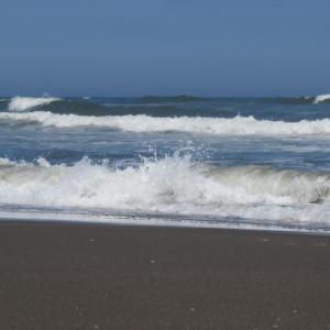 ウルトラシリーズ『大自然・海』 第1314話