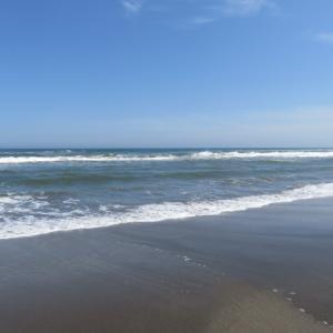 ウルトラシリーズ『大自然・海』 第1316話