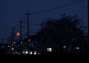 2020年4月 月齢15 ちょいスーパームーンの満月
