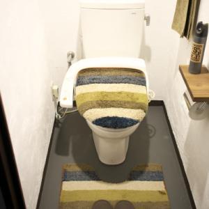 漆喰とペンキでトイレの模様替え♪