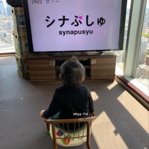 1y6m19d ハマる教育番組 シナぷしゅ