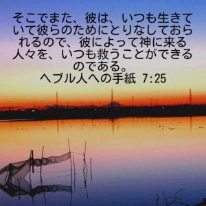 ヘブル人への手紙7章25節(写真 牛久沼)遠くに見えるワ 富士山です