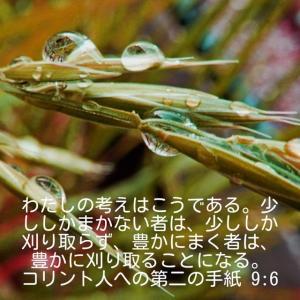 コリント人への第二の手紙9章6節