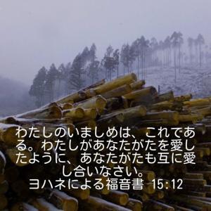 ヨハネによる福音書15章12節
