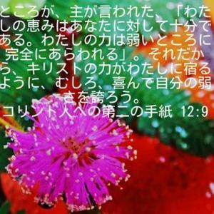 コリント人への第二の手紙12章9節