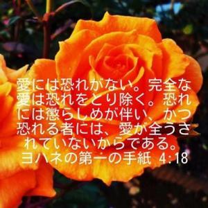 ヨハネ第一の手紙4章18節