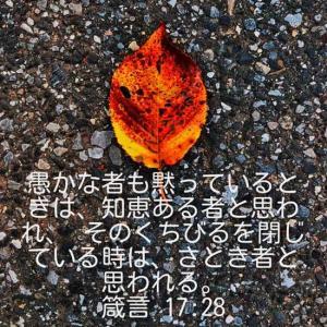 箴言17章28節(写真 2021秋落ち葉コロナ過の中で)