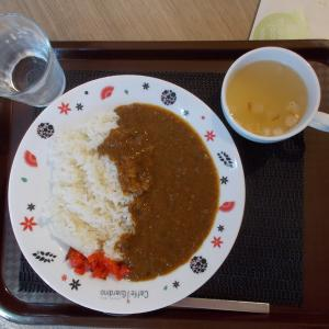 【学食のカレー】大阪国際大学イタリアンカフェ Caffe Giardino 2018/8/31
