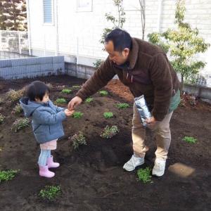 5月~7月のお庭づくりにつきまして