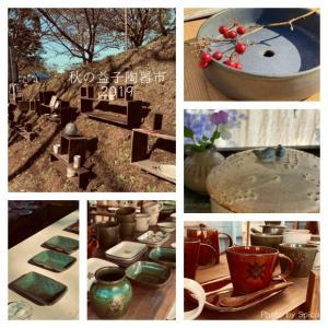 暮らしと器、収納を考える_益子陶器市後の我が家の台所