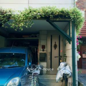 しばしパーゴラの植物とお別れ。一戸建てのメンテナンス_24年目の外装工事