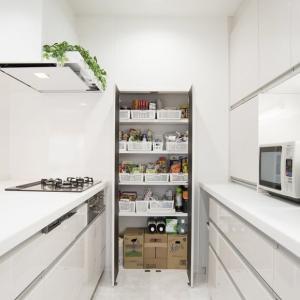 住まいの設計と間取りとデザインでの生活スタイル・・・そして収納スペース充実での違い、キッチン周辺の収納スペース、物置、パントリー、ストックスペースの充実と生活習慣での収納のあり方。