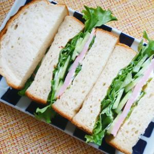ハムとキュウリのサンドイッチ ~毎日朝ごはん食べてる?~