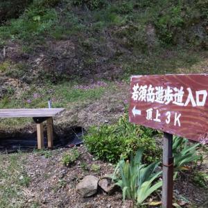 若須岳。~ コウノトリに会えるかも知れない里山へ ~