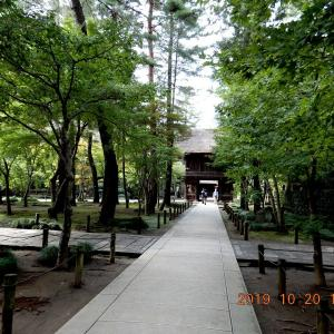 No.1976 これが国の天然記念物? 平林寺雑木林。