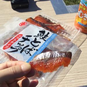北海道産 鮭とばチップ*丸本 本間水産*