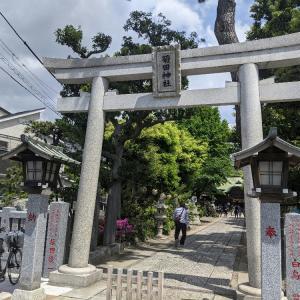 Googleマップを見ながら散策(習志野市菊田神社、谷津干潟)