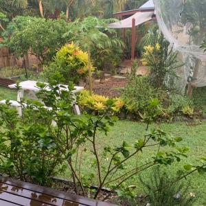 オーストラリアに雨が!
