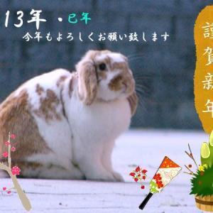 2013年(巳年)-新年のご挨拶-