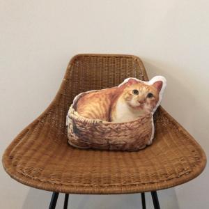 10/27(日)『猫づくしイベント』開催!