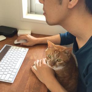 猫と暮らすということ。その23