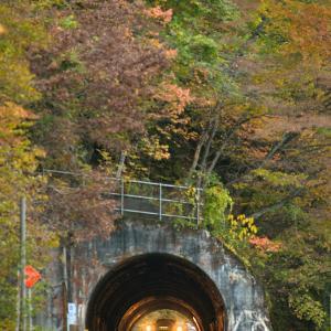 錦秋の只見線 @とあるトンネルにて