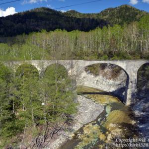 白樺の囲まれたアーチ橋