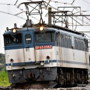 E131系600番台TN6+TN5編成新津配給