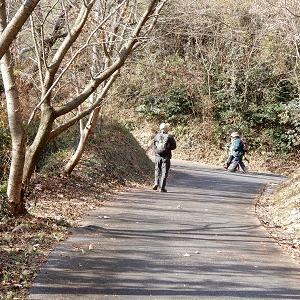 大竹市を歩く6~【阿多田島】のボス猫に挨拶をして帰りましょうwの巻~