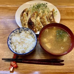 コロナ支援・訳あり商品「博多餃子」