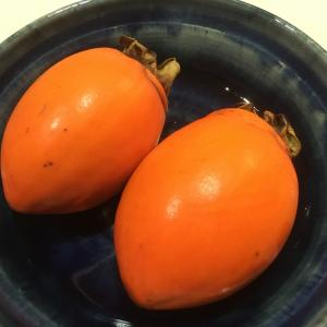 柿の種の形をした柿の種