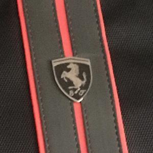 フェラーリもらいました