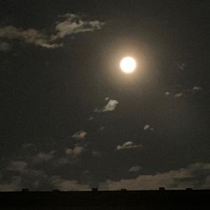 今夜は満月です✨