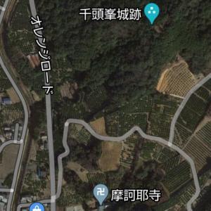 ワンコと登る千頭峯城
