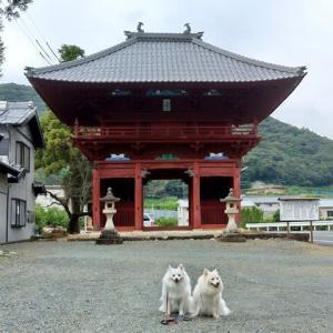 大福寺の仁王門と分校跡