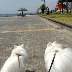 2つの聖地となった弁天島